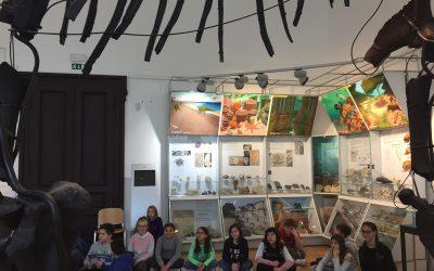 Muzejski dan – 6. razred